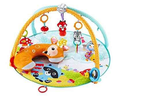 Fisher-Price Deluxe Play