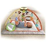 Fisher Price My Little SnugaMonkey Ultra Comfort Musical Gym