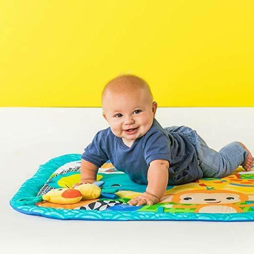 Bright Starts Zippy Activity For Easy To